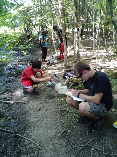 HRE Participants Collecting and Recording Data at an Ephemeral Pool
